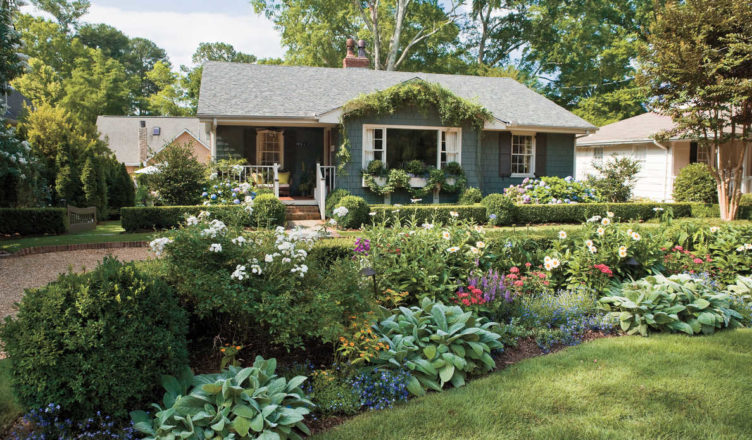 Protect Your Garden From Harmful Pests With Pest Control Services
