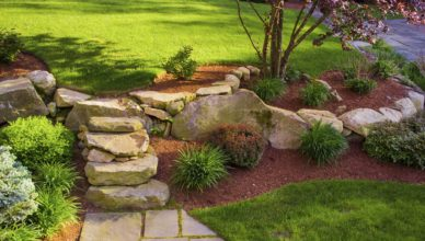 Restoring Lawn Health With Lawn Mowing Services
