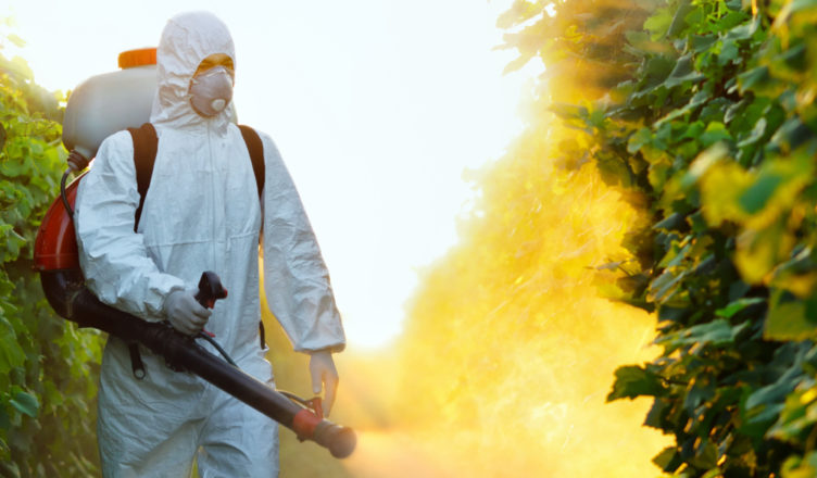 What Are The Qualities of The Best Pest Control Specialists?