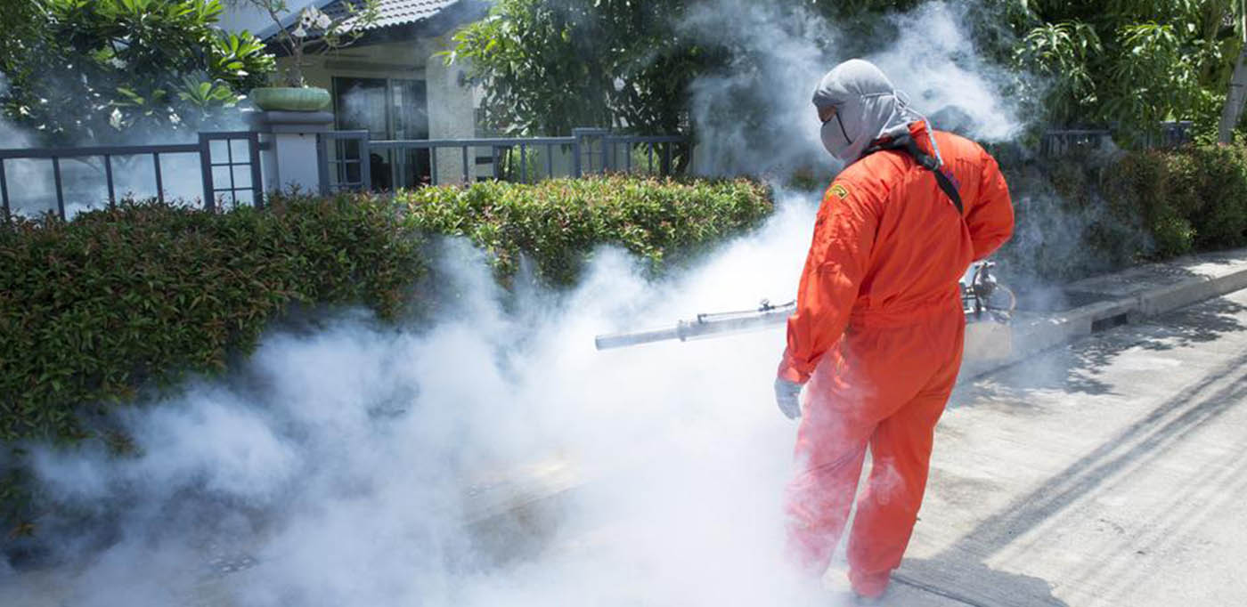 What is Natural Mosquito Control?